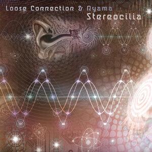 Stereocilia