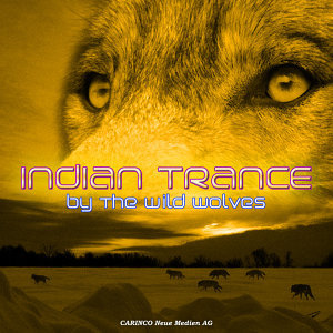 Indian Trance Dance