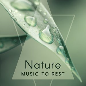 Nature Music to Rest – Soothing Waves, Nature Relaxation, New Age Calm Music, Sounds to Rest & Relax