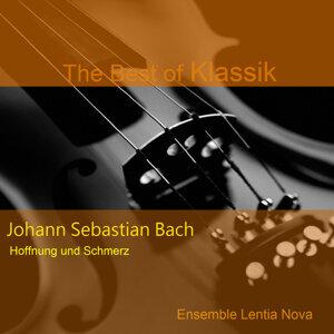 Johann Sebastian Bach: Hoffnung und Schmerz - Geist und Seele sind verwirret BWV 35