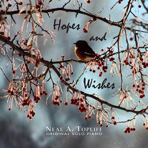 HOPES AND WISHES