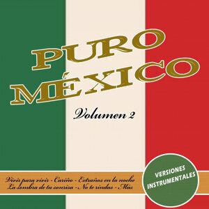 Puro México (vol.2)