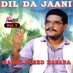 Dil Da Jaani Vol. 2 (Mahiye)