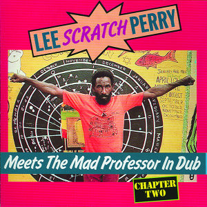 Lee Perry - Meets The Mad Professor