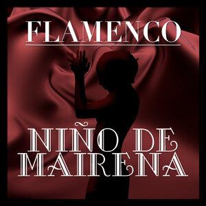 Flamenco: Niño de Mairena