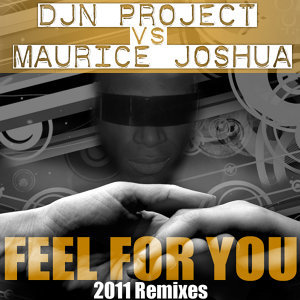 Feel for You 2011 Remixes