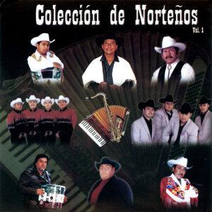 Colección de Norteños, Vol.1