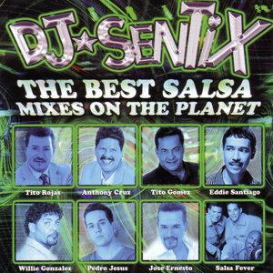 Salsa Mixes