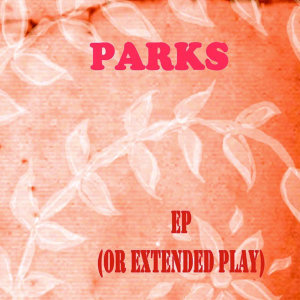 EP (or Extended Play)