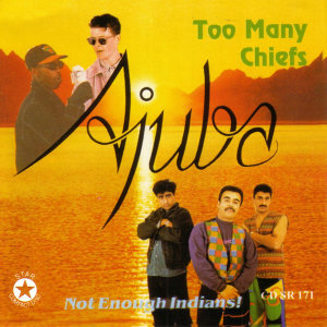 Too Many Cheifs- Not Enough Indians!