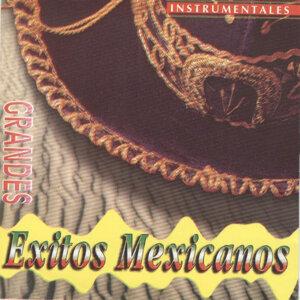 Grandes Exitos Mexicanos (Instrumentales)
