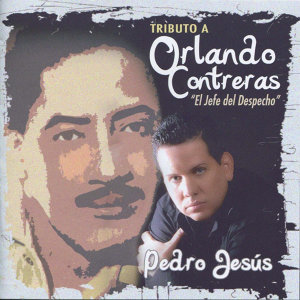 Tributo A Orlando Conteras - El Jefe del Despecho