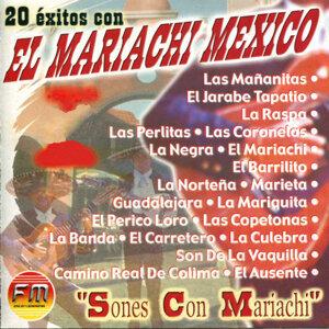 20 Éxitos con El Mariachi Mexico - Sones Con Mariachi