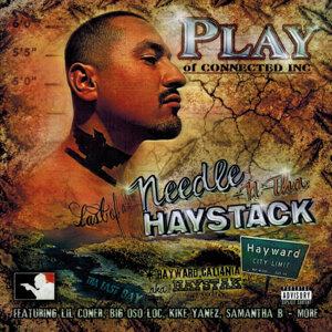 Needle N Tha Haystack