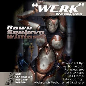 Werk Remixes