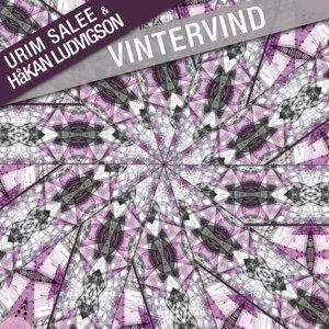 Vintervind - Single