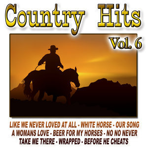 Country Hits Vol.6