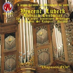 Vincent Lübeck: Intégrale orgue - L'orgue baroque en Allemagne du nord, Vol. 1