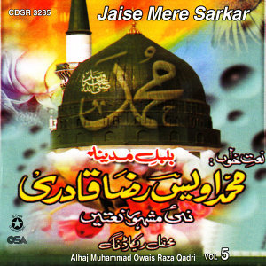 Jaise Mere Sarkar Vol. 5