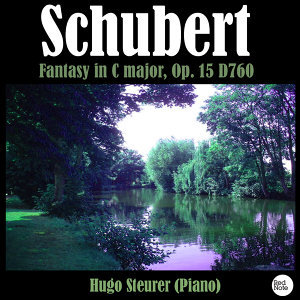 Schubert: Fantasy in C major, Op. 15 D760