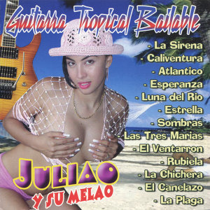Exitos de la Guitarra Tropical Bailable