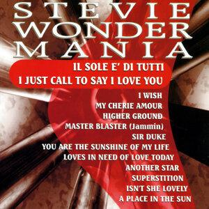Stevie Wonder Mania