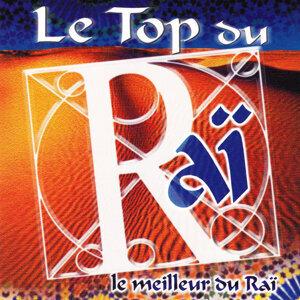 Le Top Du Raï