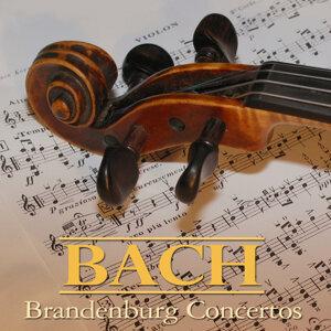 Bach Brandenburg Concertos