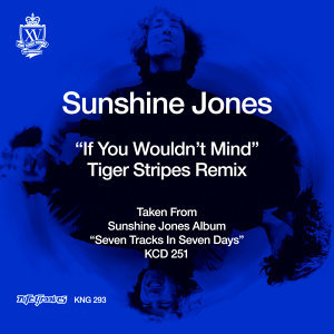 If You Wouldn't Mind (Tiger Stripes Remix)