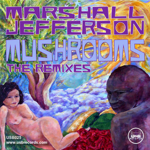 Mushrooms (The Remixes)