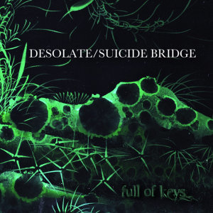 Desolate / Suicide Bridge