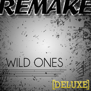 Wild Ones (Flo Rida feat. Sia Deluxe Remake) - Single