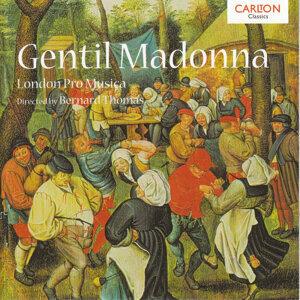 Gentil Madonna