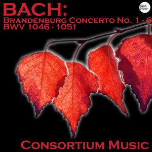 Bach: Brandenburg Concerto No. 1 - 6 BWV 1046 - 1051
