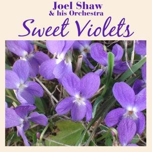 Sweet Violets