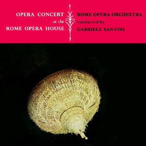 Opera Concert At The Rome Opera House
