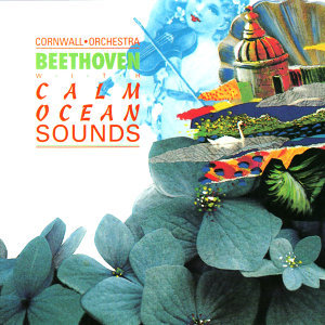 Cornwall Orchestra Performs Beethoven with Calm Ocean Sounds