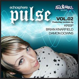 Pulse 2010 Vol 2