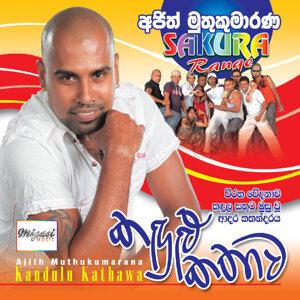 Kandulu Kathawa