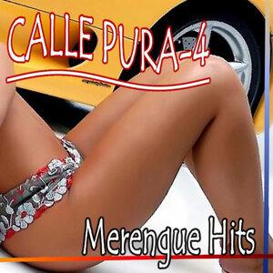 Calle Pura 4 (Merengue Hits 2011)