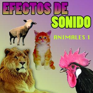 Efectos De Sonido Animales Vol.2