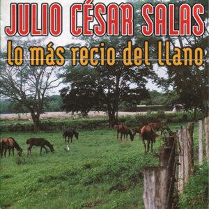Lo Mas Recio del Llano