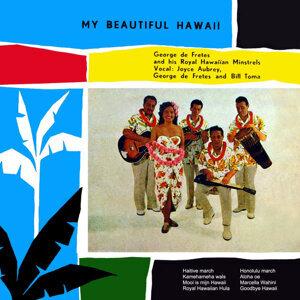 My Beautiful Hawaii