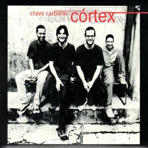 Córtex