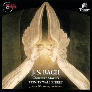 Bach: Complete Motets, BWV 225-230, BWV 118