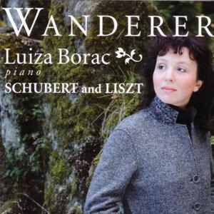 Schubert / Liszt: Wanderer