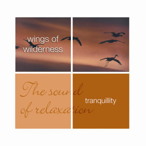 Tranquillity- Wings Of Wilderness
