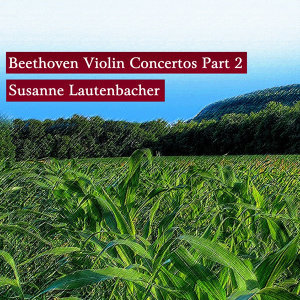 Beethoven Violin Concertos Part 2