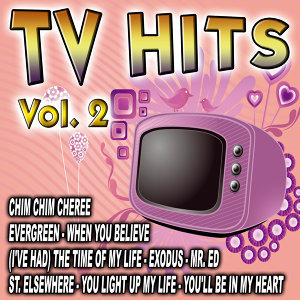 TV Hits Vol. 2