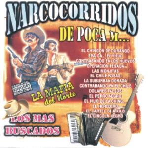Narcocorridos De Poca M… - Los Mas Buscados